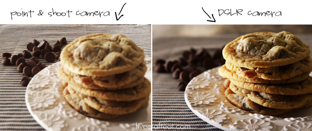 the cookie comparison - point & shoot camera vs. dslr camera