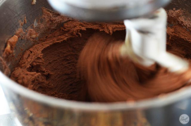 double chocolate cookie batter. yum.