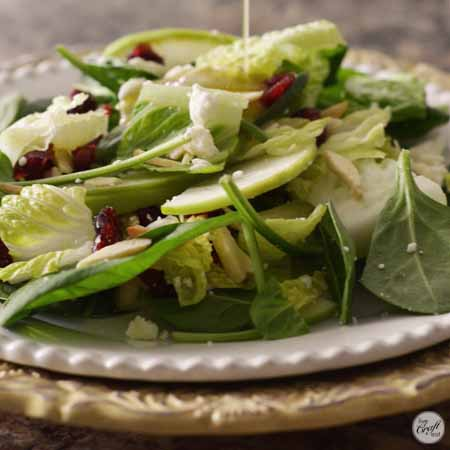apple cranberry salad 450x450