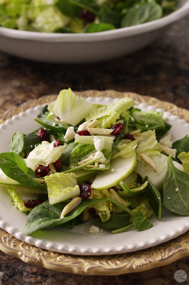 yummy, incredible, delicious apple cranberry feta salad! you need to eat this.