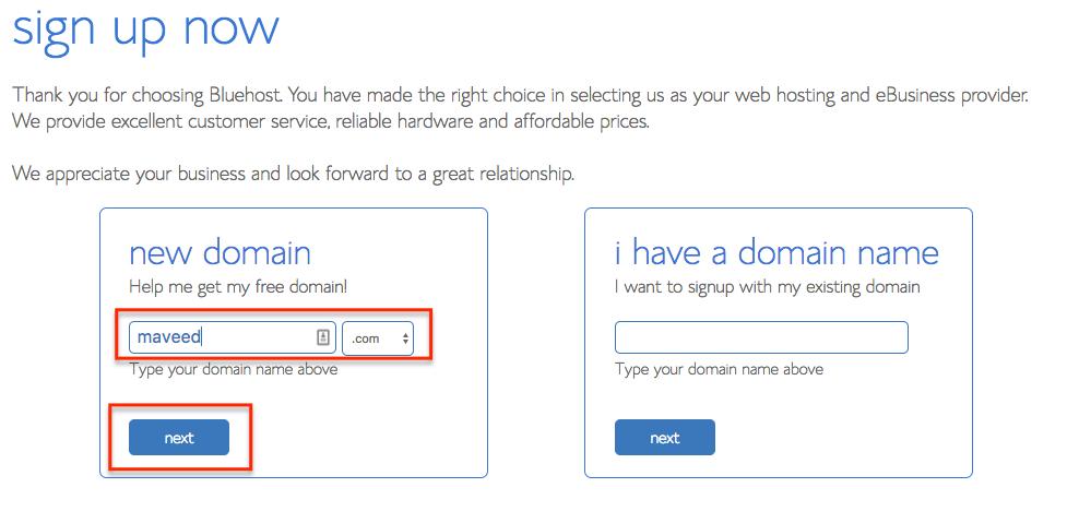 Step 4 Enter Domain and .com